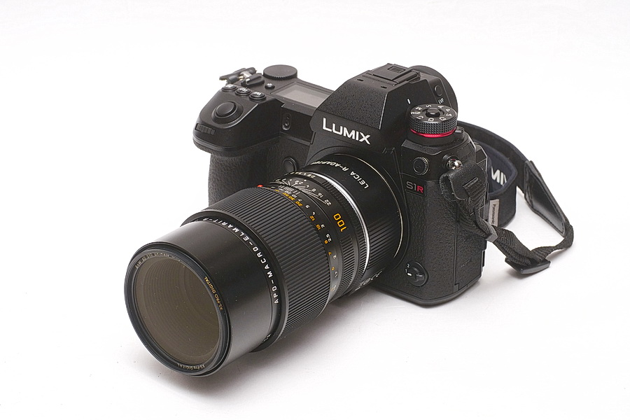 Panasonic LUMIX S1R with LEICA 100AME
